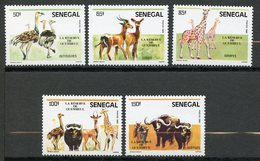 Senegal, Yvert 675/679, Scott 691/695, MNH - Senegal (1960-...)