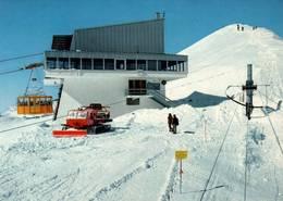 CPM - MONTANA-CRANS - Restaurant Du Glacier De La Plaine-Morte - VS Wallis