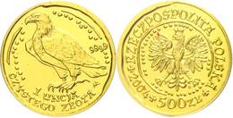 500 Zlotych Gold, 2004, Goldbarrenmünze Adler, 1 Oz, KM 295, Auf Coin Card Der National Bank Of Poland, St.  St - Polen