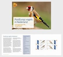 H01 Caribbean Netherlands 2019 Europa 2019 - Birds In The Netherlands Presentation Pack - Niederländische Antillen, Curaçao, Aruba