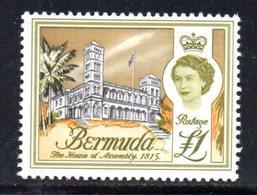 APR636 - BERMUDA 1962, 1 Sterlina Yvert N. 179  ***  (2380A) . - Bermuda