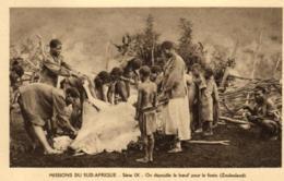 Afrique - Missions Du Sud-Afrique - On Dépouille Le Boeuf Pour Le Festin (Zoulouland) - C 5655 - Afrique Du Sud