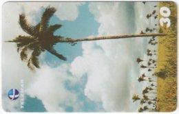 BRASIL H-837 Magnetic Telemar - Product Of Palmtree - Used - Brésil