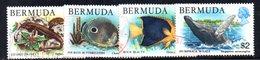 APR643 - BERMUDA 1978, 4 Valori Usati  (2380A) . - Bermuda