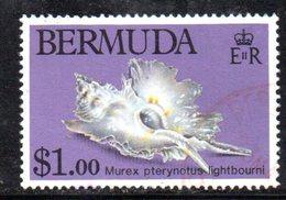 APR647 - BERMUDA 1982 , 1 Dollaro Yvert N. 412  Usato  (2380A) .  Conchiglia - Bermuda