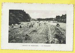 * Maredret (Anhée - Namur - La Wallonie) * (PIB - P.I.B.) Abbaye De Maredret, La Fenaison, Agriculture, Landbouw, Rare - Anhée