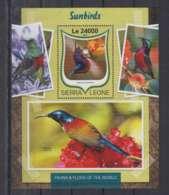 W636. Sierra Leone - MNH - 2016 - Fauna - Animals - Birds - Sunbirds - Bl - Autres