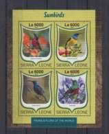 W636. Sierra Leone - MNH - 2016 - Fauna - Animals - Birds - Sunbirds - Autres