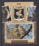 W636. Sierra Leone - MNH - 2016 - Fauna - Animals - Birds - Owls - Bl - Autres