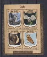 W636. Sierra Leone - MNH - 2016 - Fauna - Animals - Birds - Owls - Autres