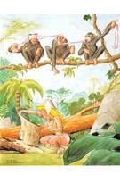 Pierre MILON - Pin-up - Jungle - Singes - Illustrateurs & Photographes