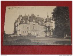 HUN  -  ANHEE   -   Le  Château   -   1920   - - Anhée