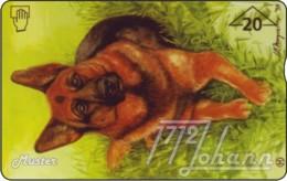 AUSTRIA Private: *ANK - Hund* - SAMPLE [ANK F458] - Autriche