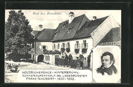AK Hinterbrühl, Höldrichsmühle, Portrait Von Franz Schubert - Unclassified