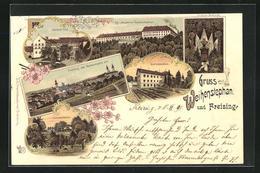 Lithographie Freising, Kgl. Akademie Weihenstephan, Lintner Denkmal Und Panorama - Freising