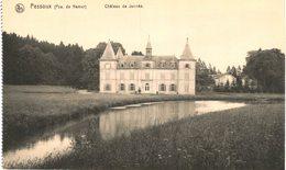 PESSOUX  Château De Jannée. - Havelange