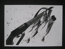 CACCIA HUNTING CHASSE GUN FUCILE CARABINE BIRDS OISEAUX UCCELLI - Sporten