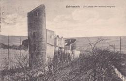 Echternach Une Partie Des Anciens Remparts - Echternach