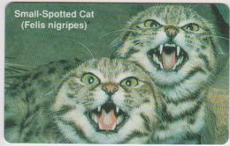 #07 - NAMIBIA-04 - SMALL-SPOTTED CAT N$50 - Aruba