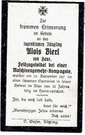 Alois BIERL - Feldzugssoldat Bei Einer Maschinengewehr Komp. +1917 - 1914-18