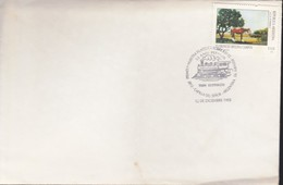 ARGENTINA 1993 - BUSTA Annullo Marcofilia Mostra Filatelica. - Argentina