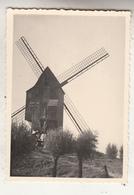 Willaupuis - 1948 -  Moulin à Vent - Windmolen - Photo Format 7 X 10 Cm - Fotos
