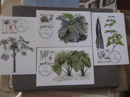 4 Cartes Premier Jour - FLORE DE WALLIS ET FUTUNA - MATA UTU 22 Avril 2004 - Illustrateur : L. ARQUER - Wallis And Futuna
