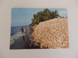 Haiti, Ca-Ira Léogâne: Milloins Of Discarded Conch Shells Have Formed The World's Most Beautiful Garbage Pile. - Postcards