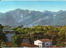 MARINA DI PIETRASANTA - Pineta E Alpi Apuane - Italy