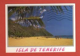 CP20 EUROPE ESPAGNE TENERIFE  048 - Tenerife