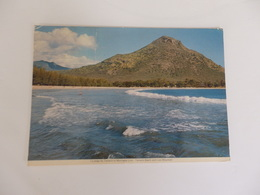Ile Maurice, Tamarin, Montagne Lion. - Mauritius