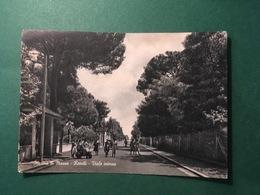 Cartolina Marina Di Massa - Ronchi - Viale Interno - 1930 Ca. - Massa
