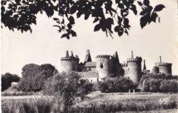 Penvins Sarzeau (56) - Château De Suscinio - Andere Gemeenten
