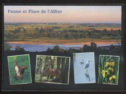 Faune Et Flore De L'Allier (03) - France