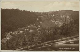 Ansichtskarte Kurort Kipsdorf/Erzgebirge Panorama, Kipsdorf 22.8.1929  - Deutschland