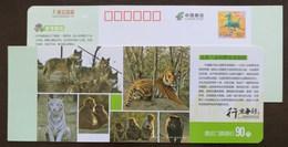 Tiger,wolf,bear,rhesus Monkey,white Tiger,China 2014 Badaling Wildlife Safari Park Admission Ticket Pre-stamped Card - Félins