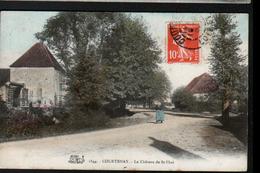 45, Courtenay, Le Chateau De Saint Phal - Courtenay