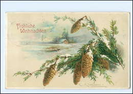Y12086/ Catherina Klein  Weihnachten Tannenzapfen Litho AK 1913 - Klein, Catharina