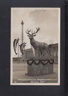 Dt. Reich AK Berlin Internationale Jagdausstellung 1937 - Ausstellungen