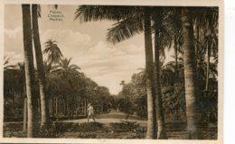 INDIA - RPPC - Palms Chepauk MADRAS - Inde