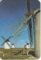 CALENDARIO DEL AÑO 1971 DE UN MOLINO-MILL-MOULIN (CALENDRIER-CALENDAR) - Tamaño Pequeño : 1971-80