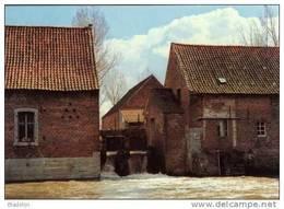 TOLLEMBEEK Bij Galmaarden (Vlaams-Brabant) - Watermolen/moulin à Eau - De Wielant Molen In 1978. Prachtige Opname! - Galmaarden