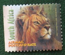 Leeuw Lion Leo Löwe Airmail Postcard Rate 2001 Mi 1339 Y&T - Used Gebruikt Oblitere SUD SOUTH AFRICA RSA - Südafrika (1961-...)