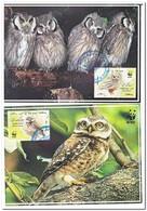 Iran 2011, Gestempeld USED, WWF, Owls - Maximum Cards