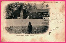 Asie - Viêt Nam - Saigon - Martin Du Jardin Botanique - OURS - Vieille Voiture - Animée - Pour FOUCHERANS 1904 - Bears