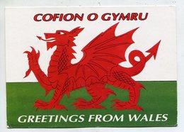 WALES - AK 348908 - Pays De Galles
