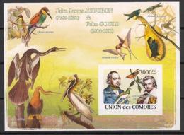Comores - 2009 - Bloc BF N°Yv. 134 - Oiseaux - Non Dentelé / Imperf. - Neuf Luxe ** / MNH / Postfrisch - Cote YT 21€ - Vögel