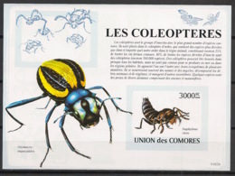 Comores - 2009 - Bloc BF N°Yv. 152 - Insectes - Non Dentelé / Imperf. - Neuf Luxe ** / MNH / Postfrisch - Cote YT 21€ - Insectes