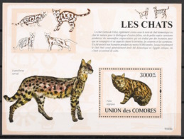 Comores - 2009 - Bloc BF N°Yv. 155 - Chats - Neuf Luxe ** / MNH / Postfrisch - Cote YT 21€ - Chats Domestiques