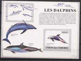Comores - 2009 - Bloc BF N°Yv. 158 - Dauphins - Non Dentelé / Imperf. - Neuf Luxe ** / MNH / Postfrisch - Cote YT 21€ - Dauphins